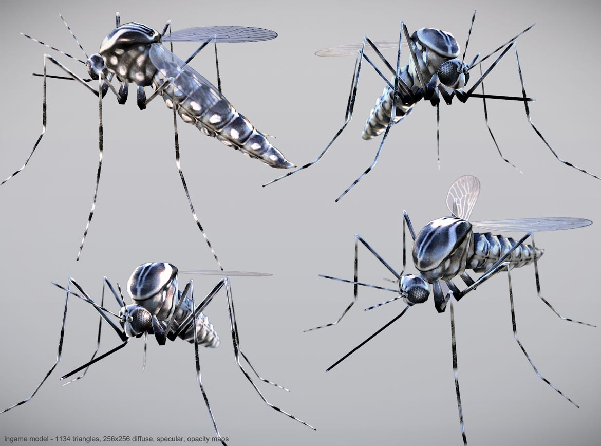 low poly mosquito